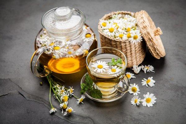 Trà hoa cúc giúp đốt cháy lượng mỡ thừa trong cơ thể