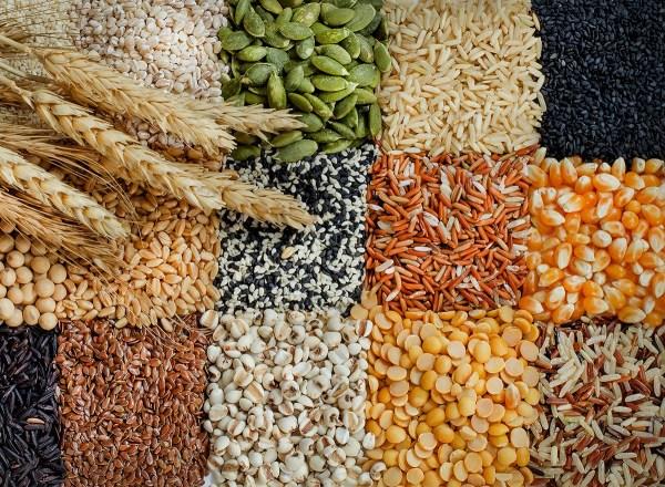 Các loại ngũ cốc