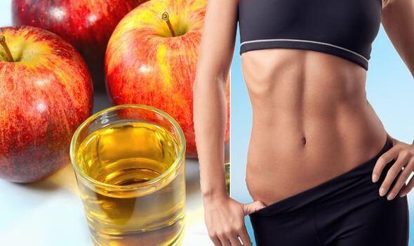 Táo có chứa lượng chất xơ lớn giúp cơ thể lâu bị đói