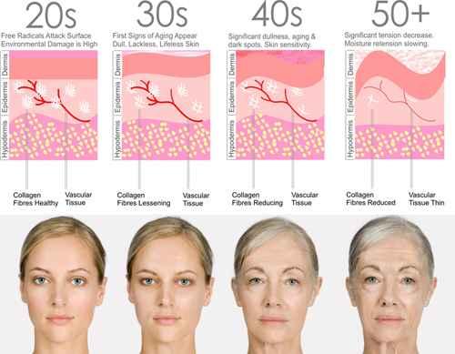 Sau tuổi 20, da bắt đầu bước vào quá trình lão hóa