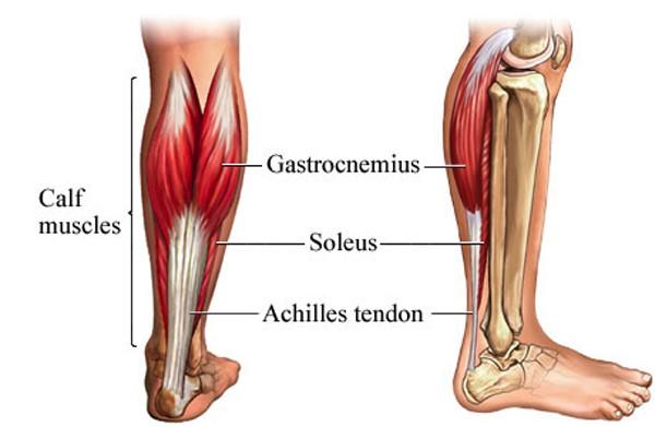 Loại bỏ bớt cơ phì đại để làm gọn bắp chân