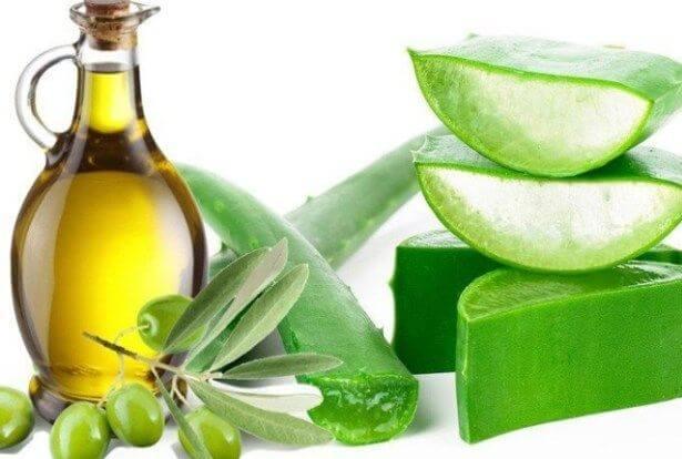 Dầu oliu và nha đam được kết hợp phổ biến trong các công thức làm đẹp, chăm sóc da