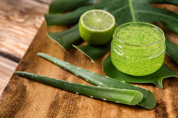 Trong tự nhiên có rất nhiều loại nguyên liệu giúp dưỡng ẩm và phục hồi làn da rất tốt