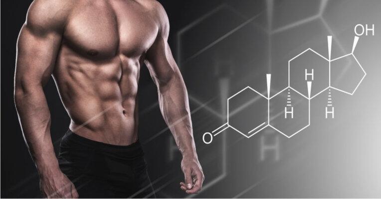 Hormone testosterone hoạt động mạnh khiến rạn da lưng ở nam giới