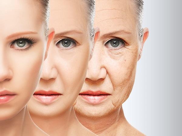 Lão hóa da khiến cho collagen sản sinh ra chậm, mô mỡ dưới da dần hao hụt