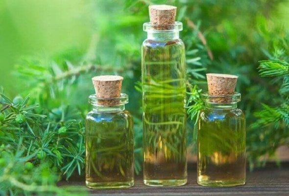 Các loại dầu tự nhiên giúp da được mịn màng và sạch đẹp