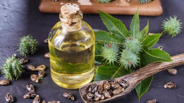 Dầu thầu dầu giúp tăng cường lượng collagen có trong da