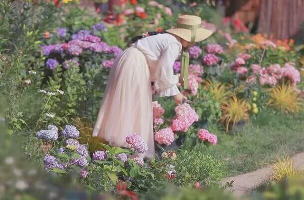 Hình ảnh chị Jessie trong vườn nhà riêng ở Florida, Mỹ