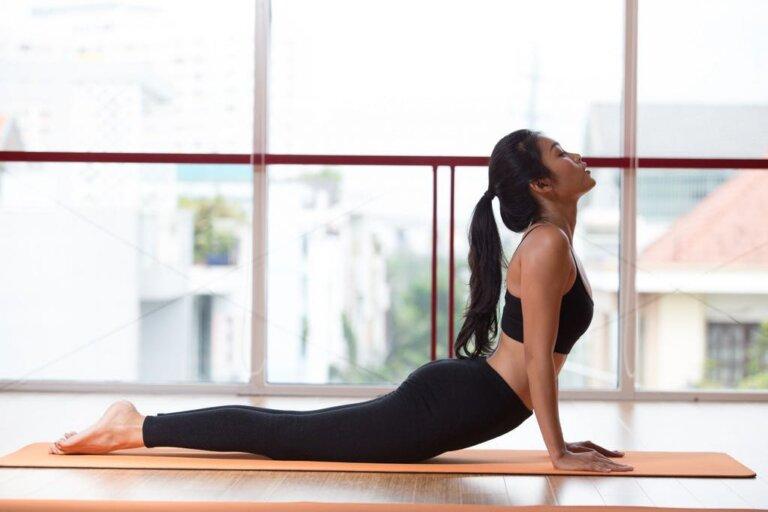 Tư thế rắn hổ manglà một trong những tư thế hữu hiệu khi tập yoga giảm béo